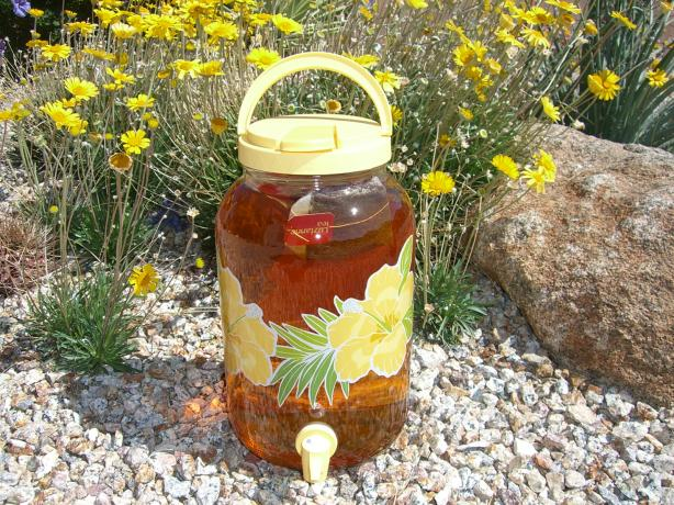 sun tea | Sweet Tea & Skyscrapers