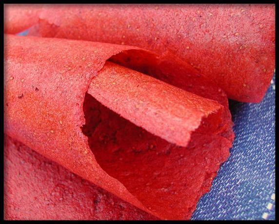 Passion Strawberry Fruit Leather - Dehydrator Roll-Ups. Photo by Sandi ...