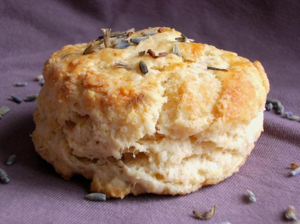 Old fashioned english lavender tea scones photo by lalaloula