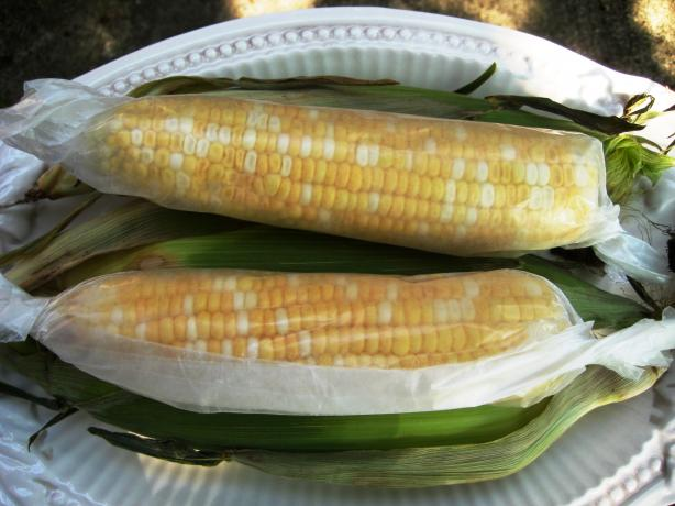 Microwave corn on the cob photo by gailanng