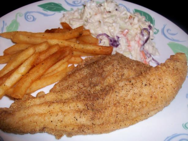 Cornmeal Crusted Oven Fried Catfish (Ww Core). Photo by mightyro ...