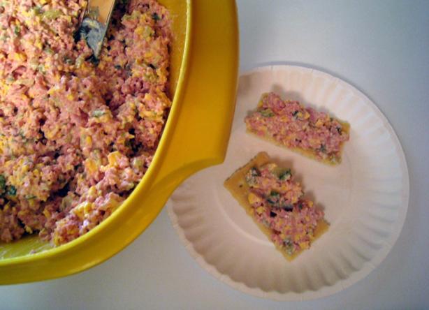 My Favorite Bologna Or Ham Salad For Sandwiches Recipe ...