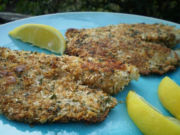Kittencals low fat baked parmesan fish fillets recipe for Baked parmesan fish