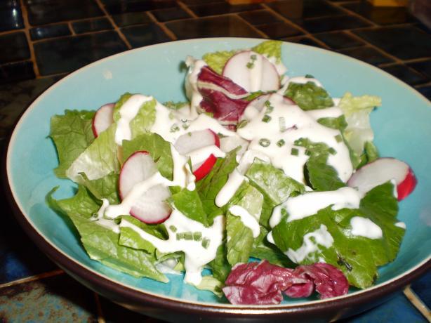... Emerald Isle Creamy Horseradish Salad Dressing. Photo by breezermom