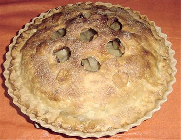 Mark's Favorite Classic Double-Crust Apple Pie. Photo by Karen=^..^=