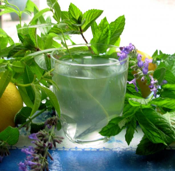 Lemon Verbena and Mint Tea - French Verveine and Mint Tisane. Photo by ...