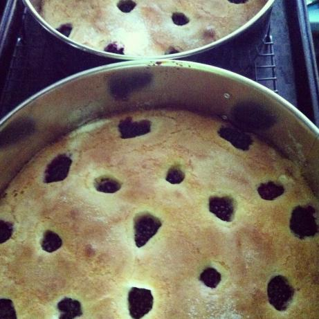Buttermilk Cake With Blackberries. Photo by Cynth_L