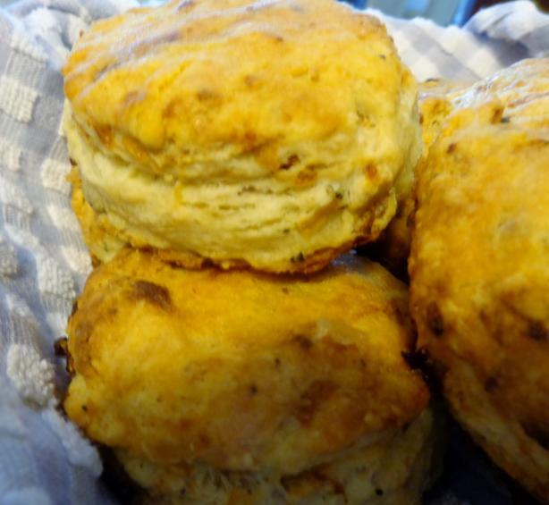 Caramelized Onion Sourdough Biscuits from KAF. Photo by Bonnie G #2