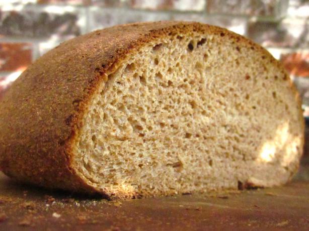 Sourdough Honey Whole Wheat Bread. Photo by gailanng