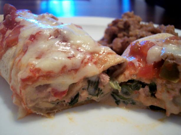 Oven-Baked Turkey-Spinach Enchiladas Extraordinaire Recipe - Food.com