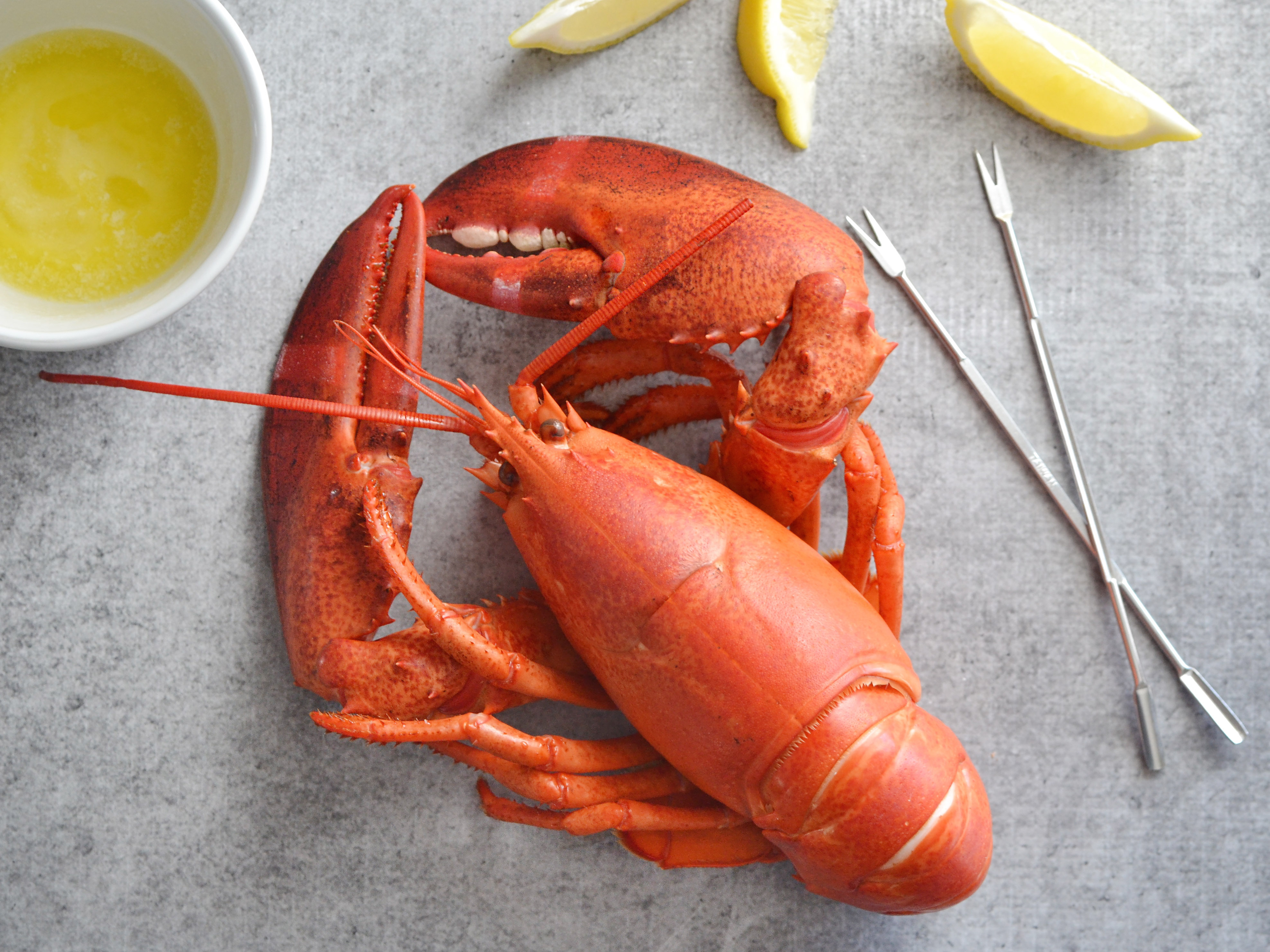 fancy lobster recipes - 580×435